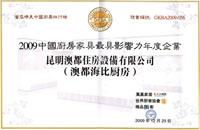 2009年中国厨房家具最有影响力品牌