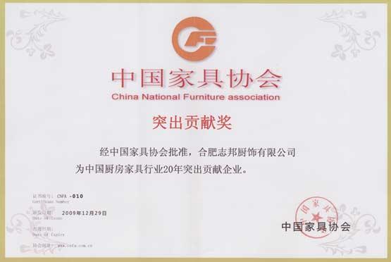 突出贡献奖(2009年)