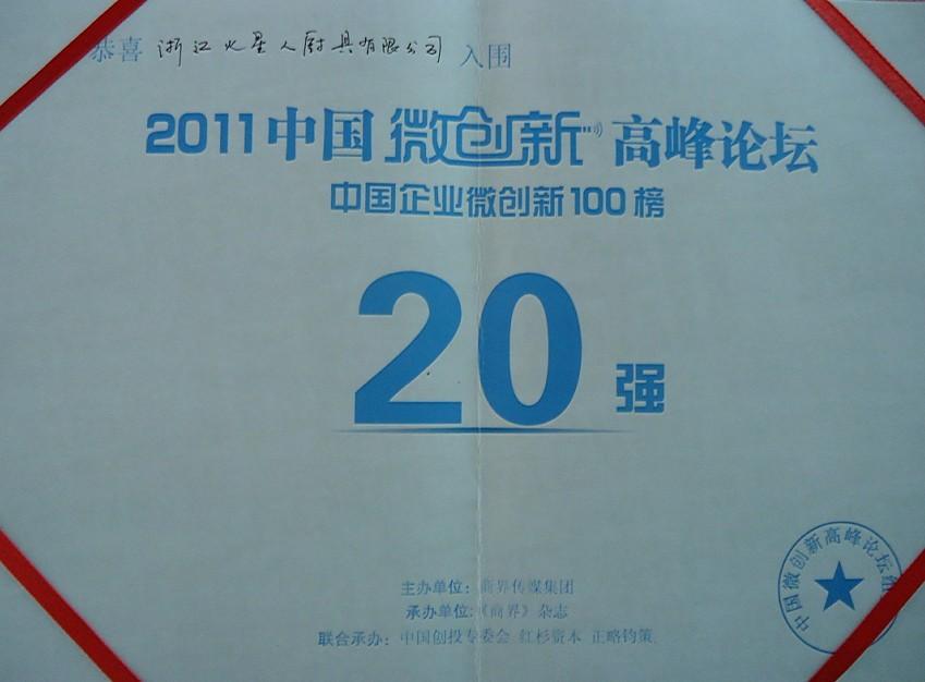 2011中国微创新高峰论坛20强