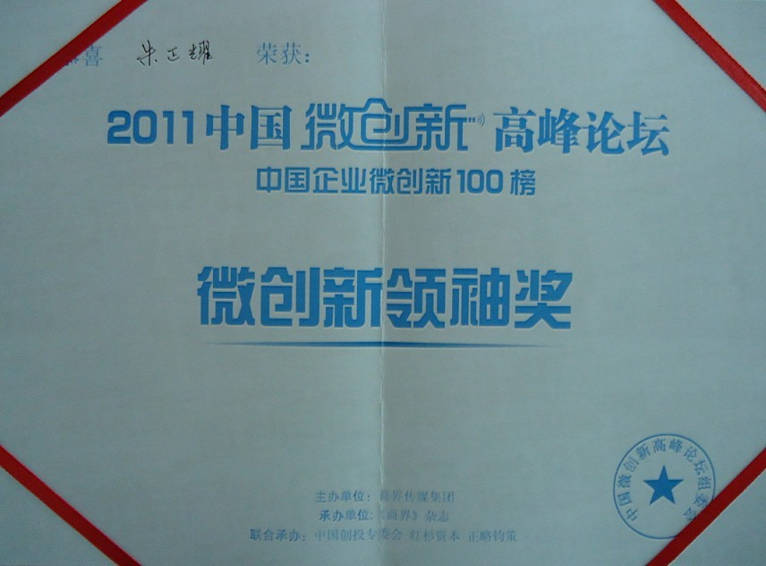 2011中国微创新高峰论坛微创新领袖奖