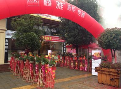 鑫意制作 雅致生活 鑫雅厨柜湖南郴州安仁专卖店开业
