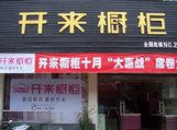 开来橱柜安徽滁州专卖店