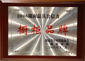湖南省建材市场最具公信力品牌