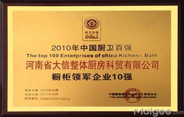 2010年中国厨卫百强橱柜领军企业10强