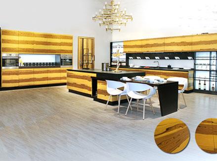 森美厨柜诺亚方舟系列产品评测 打造高品质家居